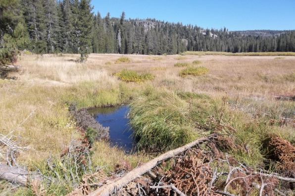 Spencer Meadow National Recreation Trail