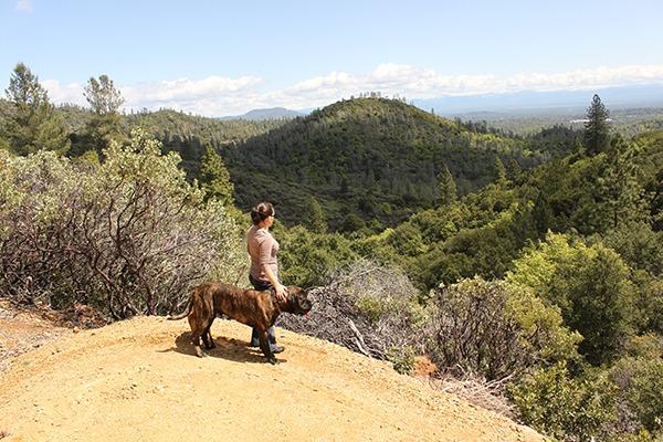 Chamise Peak Trail