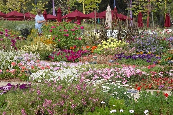 McConnell Arboretum and Botanical Gardens